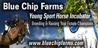 Blue Chip Farms