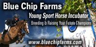Blue Chip Farms
