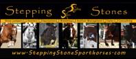 Stepping Stones Sporthorses