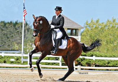 http://www.stallionguide.ca/stallions/raymeister_gp1.jpg